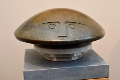 Waterbeetle, Mike Munyaradzi