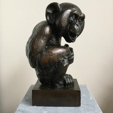 Wise Monkey